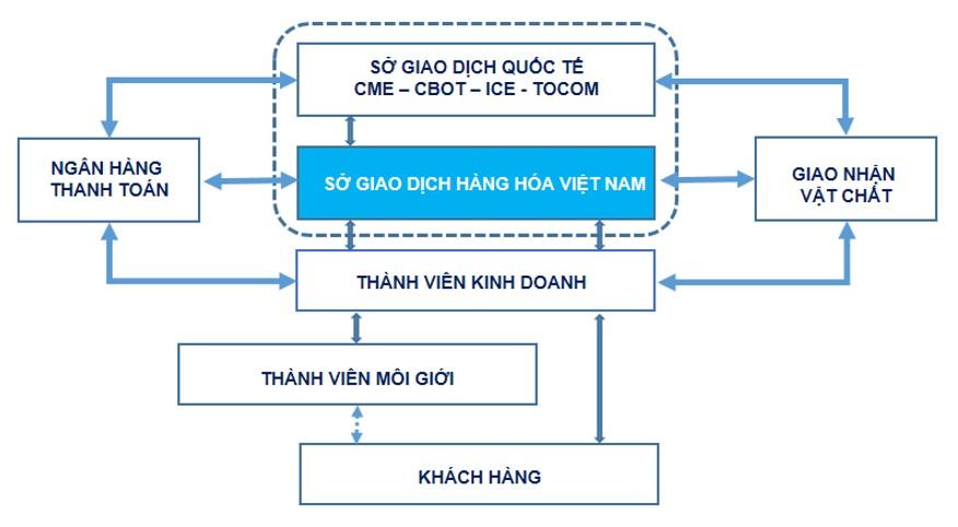 Mô hình hoạt động của sở giao dịch hàng hóa Việt Nam (MXV)